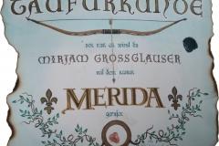 Merida_r
